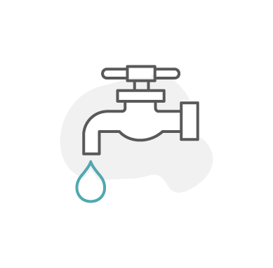 Backflow Testing icon